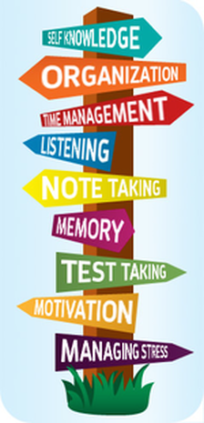 Executive Function Skills Study Skills The Learning
